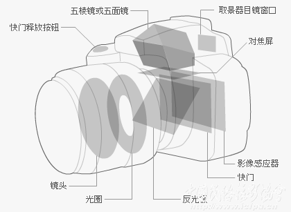 数码单镜反光照相机构造 - 不老松 - nihao1234123 的博客