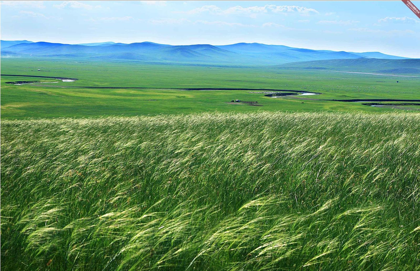 呼伦贝尔草原地图图片
